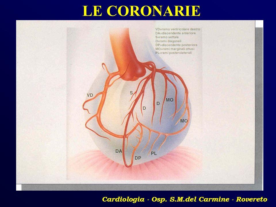 Cardiologia - Osp. S.M.del Carmine - Rovereto LE CORONARIE