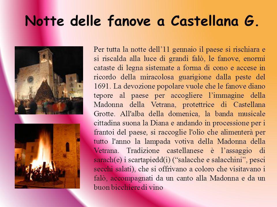 Notte delle fanove a Castellana G. Per tutta la notte dell11 gennaio il paese si rischiara e si riscalda alla luce di grandi falò, le fanove, enormi c