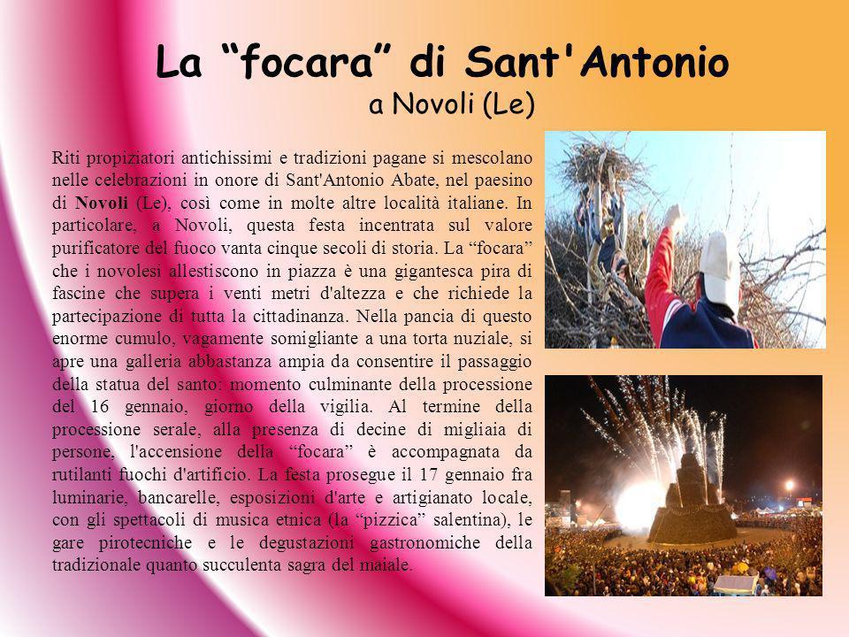 Riti propiziatori antichissimi e tradizioni pagane si mescolano nelle celebrazioni in onore di Sant'Antonio Abate, nel paesino di Novoli (Le), così co