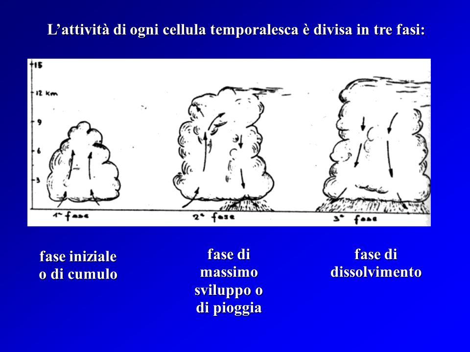 Ogni TS può essere formato da uno o più CB (cellule temporalesche) Ogni TS può essere formato da uno o più CB (cellule temporalesche) Le cellule tempo