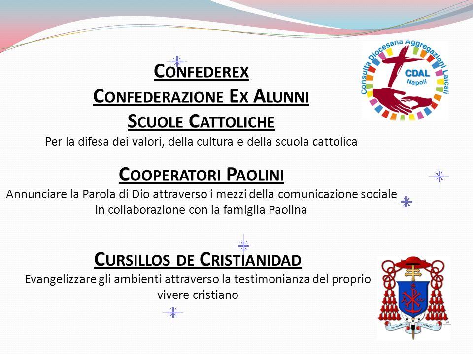 C ONFEDEREX C ONFEDERAZIONE E X A LUNNI S CUOLE C ATTOLICHE Per la difesa dei valori, della cultura e della scuola cattolica C OOPERATORI P AOLINI Ann