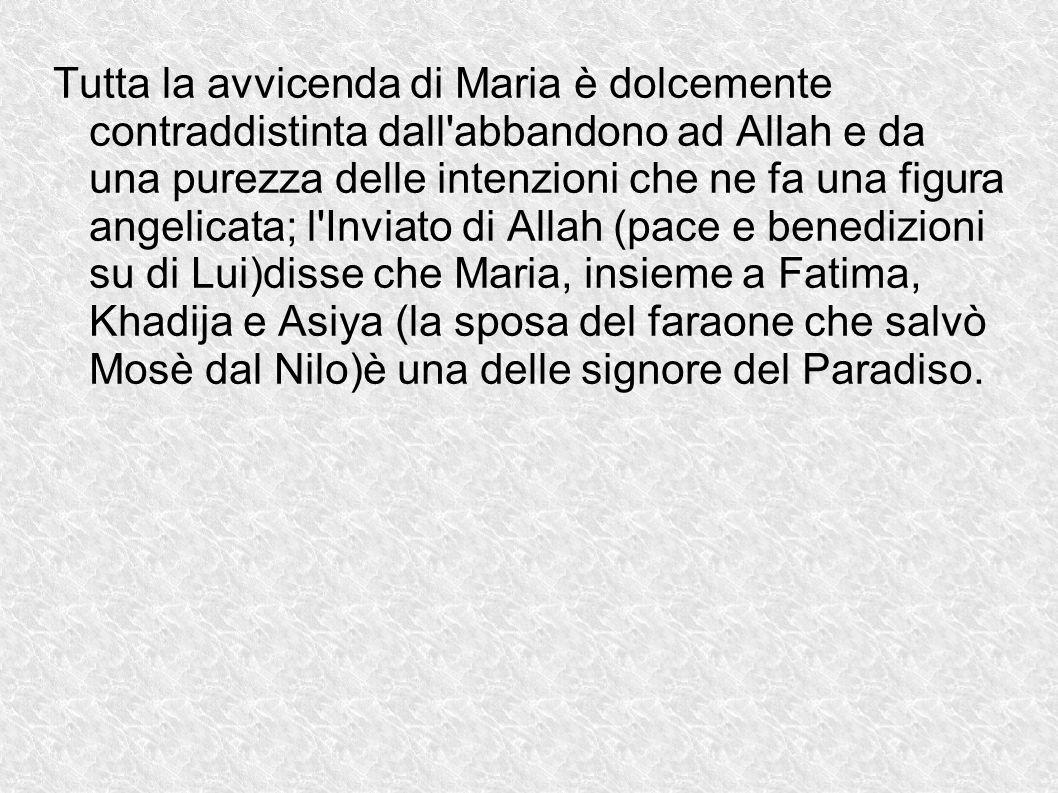 Tutta la avvicenda di Maria è dolcemente contraddistinta dall'abbandono ad Allah e da una purezza delle intenzioni che ne fa una figura angelicata; l'