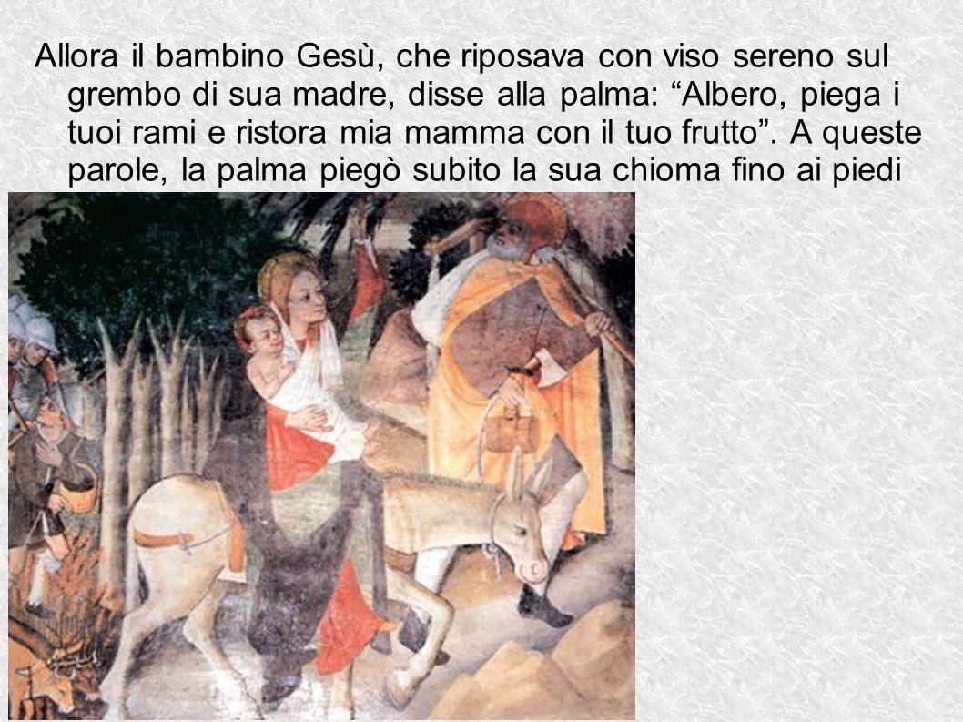 Allora il bambino Gesù, che riposava con viso sereno sul grembo di sua madre, disse alla palma: Albero, piega i tuoi rami e ristora mia mamma con il t