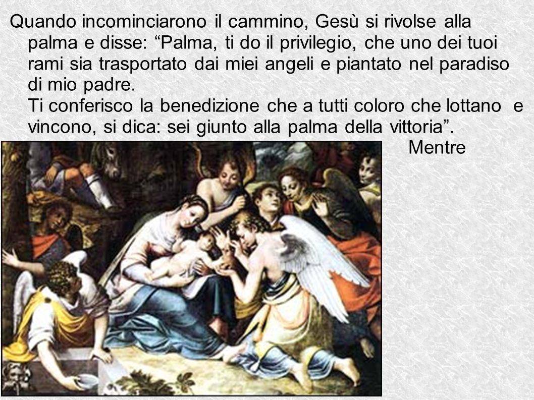 Quando incominciarono il cammino, Gesù si rivolse alla palma e disse: Palma, ti do il privilegio, che uno dei tuoi rami sia trasportato dai miei angel
