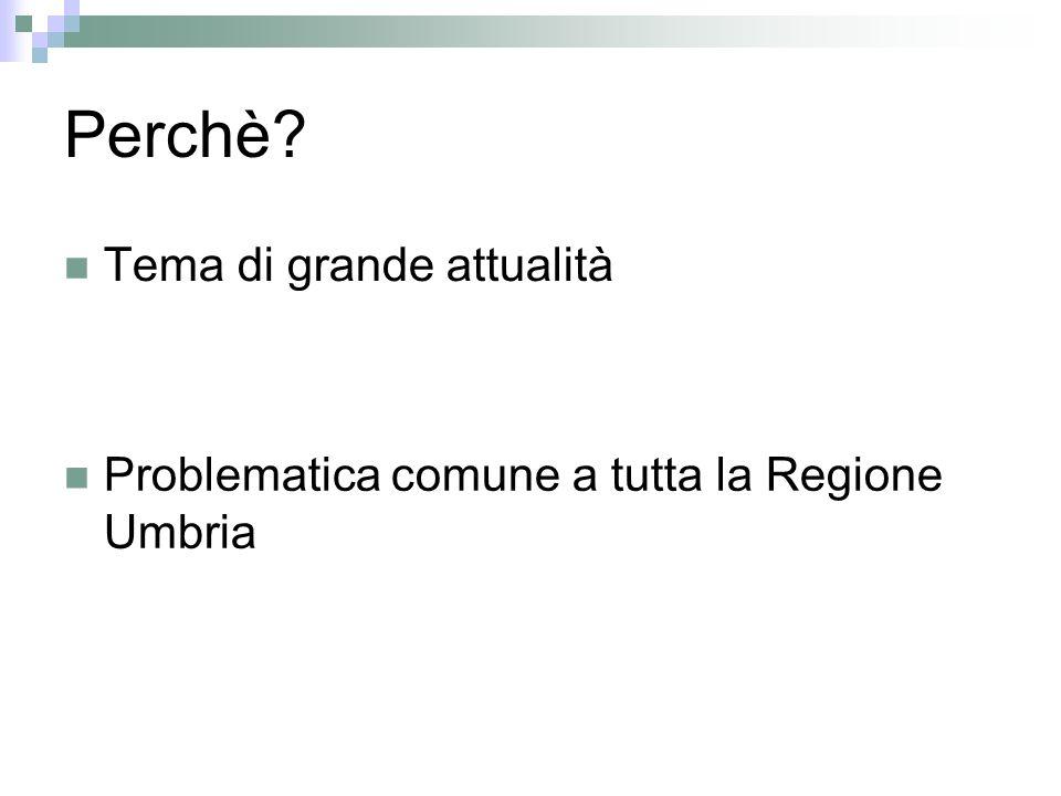 Perchè Tema di grande attualità Problematica comune a tutta la Regione Umbria
