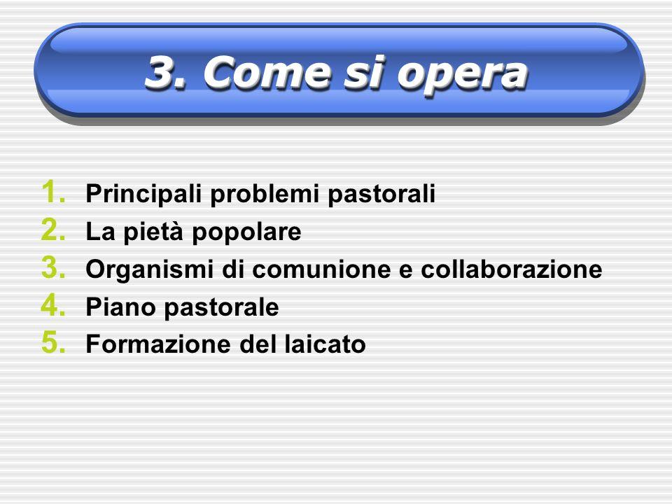 1. Principali problemi pastorali 2. La pietà popolare 3. Organismi di comunione e collaborazione 4. Piano pastorale 5. Formazione del laicato 3. Come