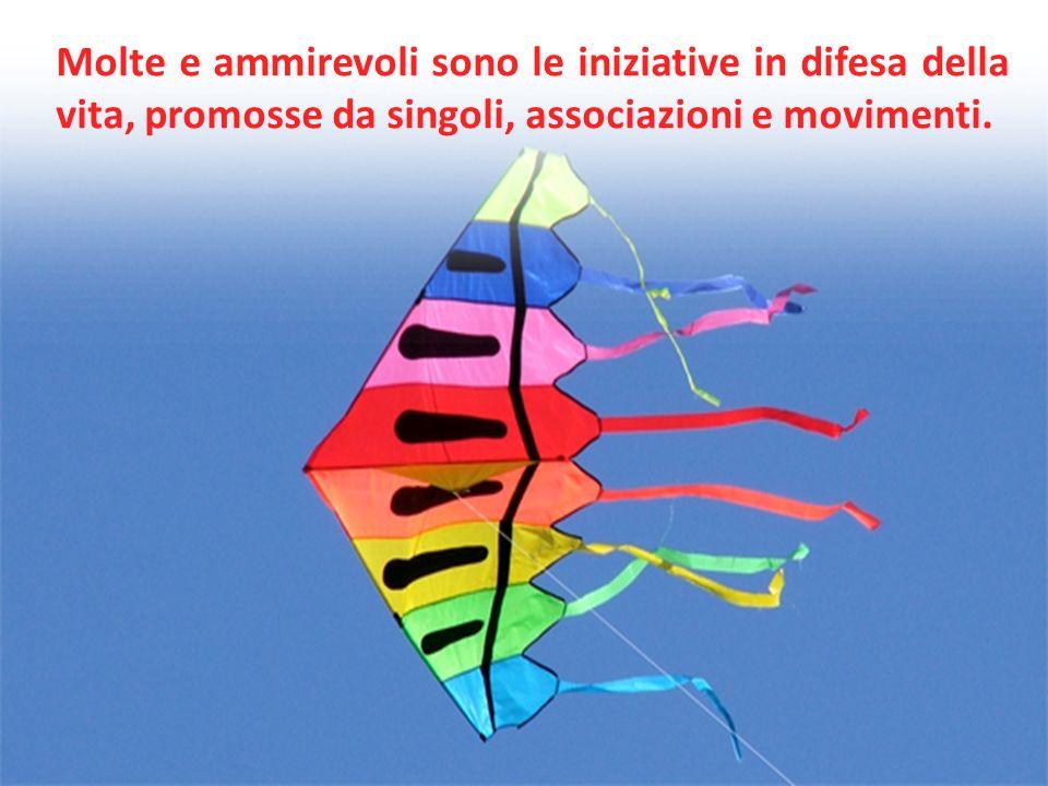 Molte e ammirevoli sono le iniziative in difesa della vita, promosse da singoli, associazioni e movimenti.