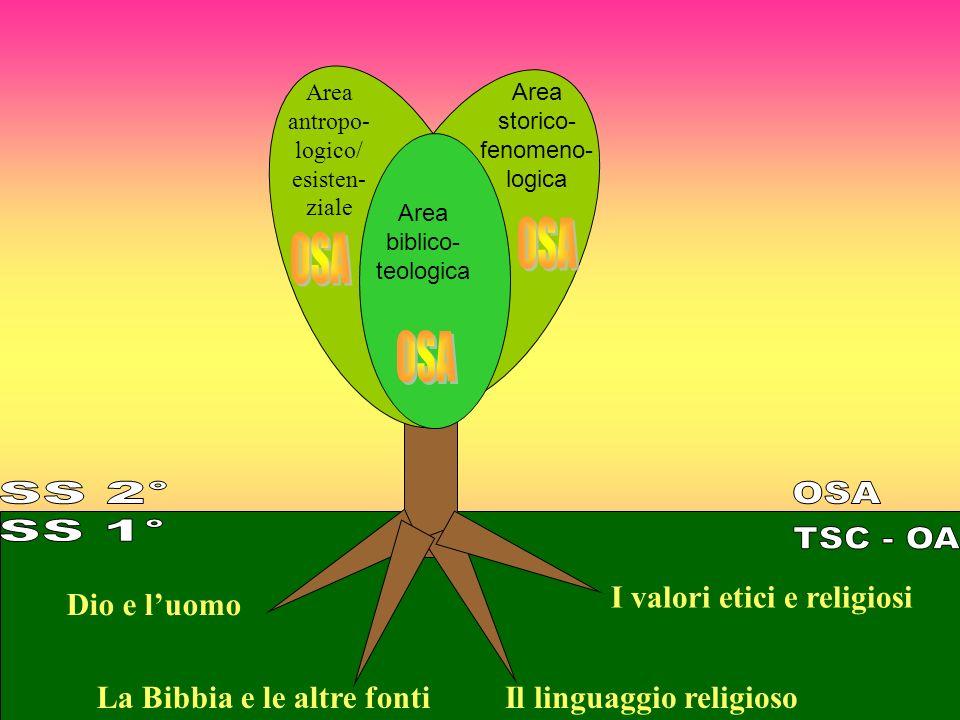 Area antropo- logico/ esisten- ziale Area storico- fenomeno- logica Area biblico- teologica La Bibbia e le altre fonti Dio e luomo I valori etici e religiosi Il linguaggio religioso