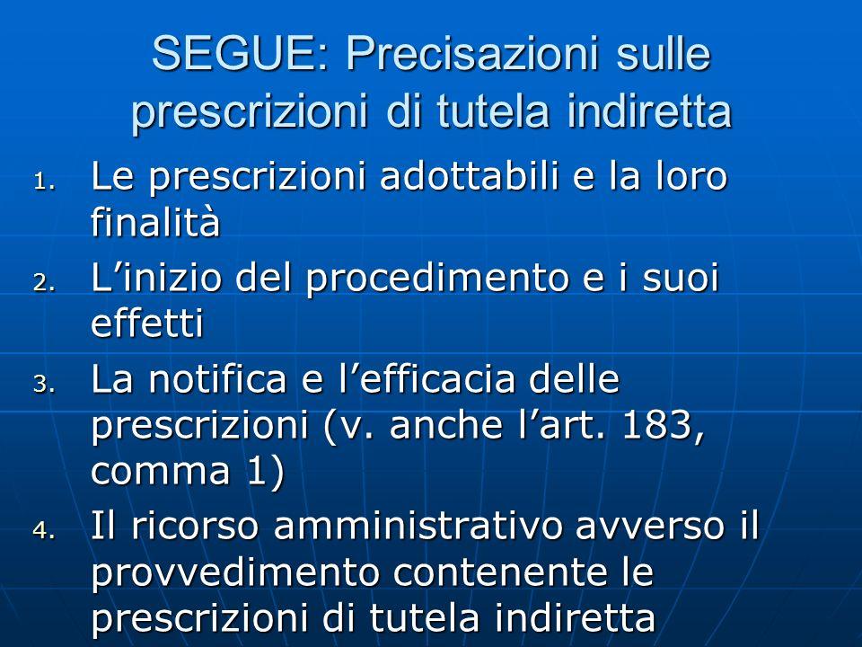 SEGUE: Precisazioni sulle prescrizioni di tutela indiretta 1. Le prescrizioni adottabili e la loro finalità 2. Linizio del procedimento e i suoi effet
