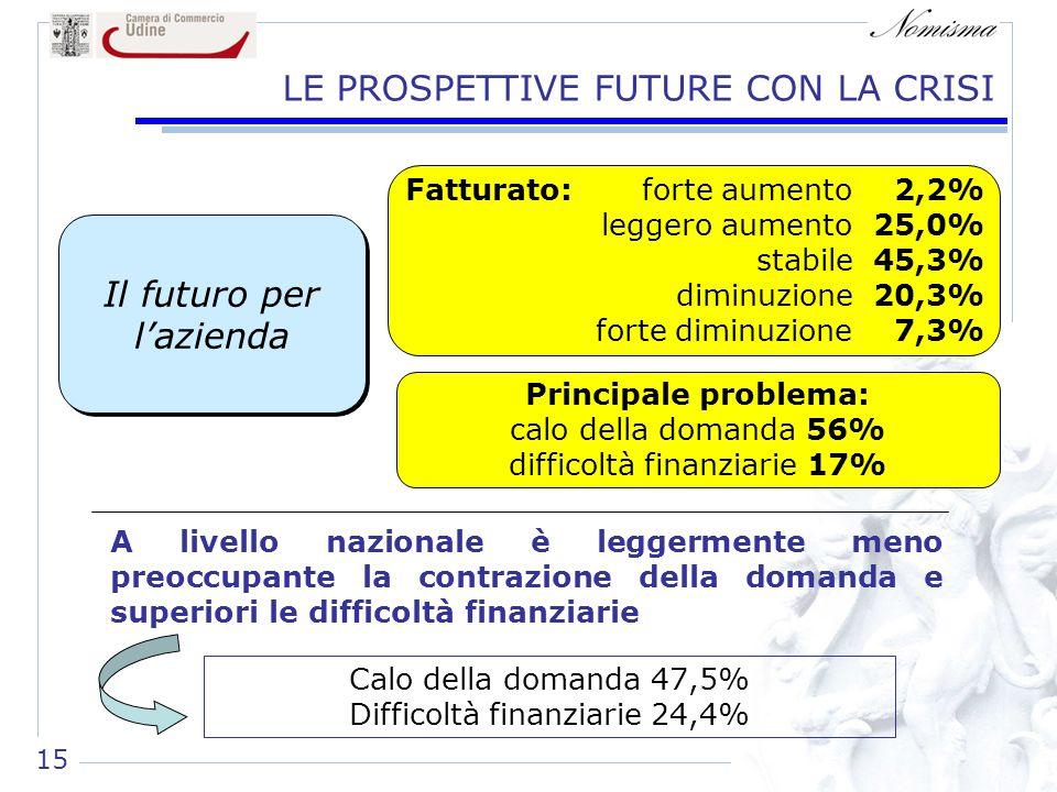 15 LE PROSPETTIVE FUTURE CON LA CRISI A livello nazionale è leggermente meno preoccupante la contrazione della domanda e superiori le difficoltà finan