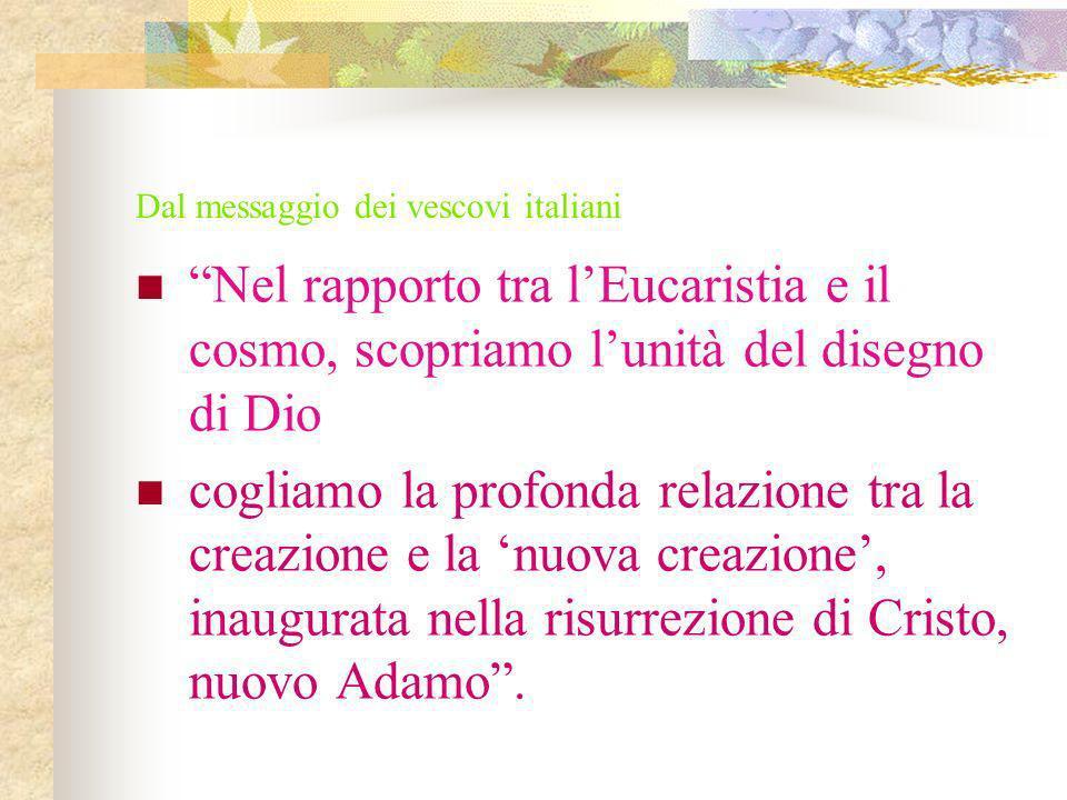 Dal messaggio dei vescovi italiani Nel rapporto tra lEucaristia e il cosmo, scopriamo lunità del disegno di Dio cogliamo la profonda relazione tra la