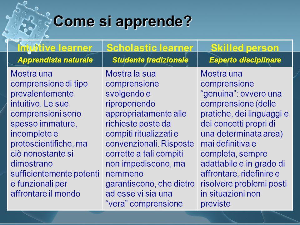 Intuitive learner Apprendista naturale Scholastic learner Studente tradizionale Skilled person Esperto disciplinare Mostra una comprensione di tipo pr