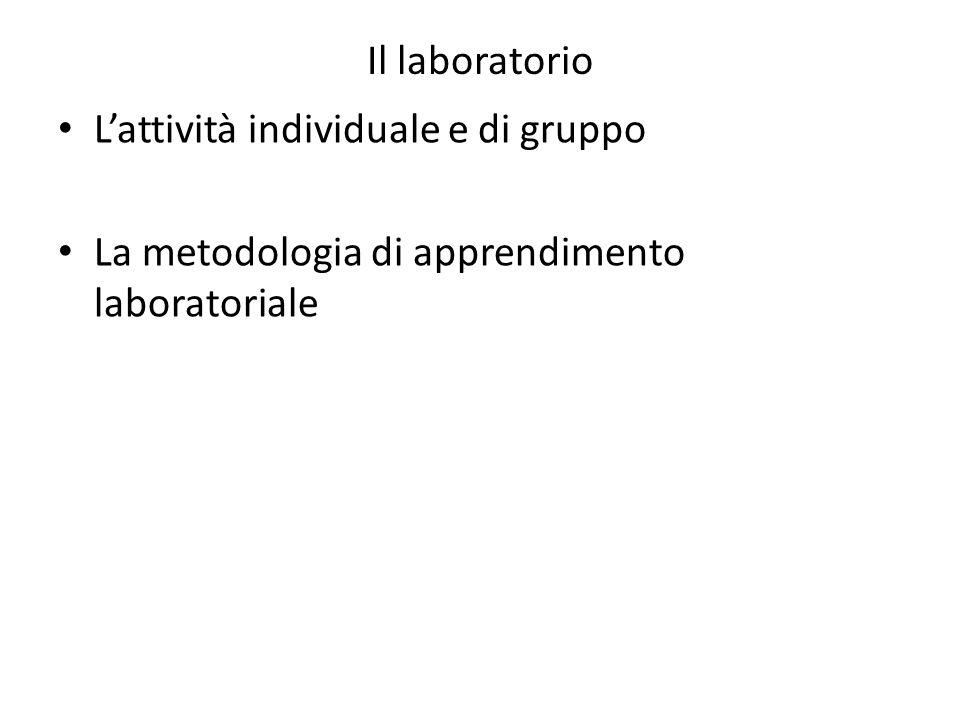Il laboratorio Lattività individuale e di gruppo La metodologia di apprendimento laboratoriale