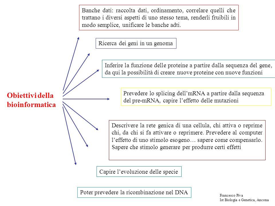 Obiettivi della bioinformatica Banche dati: raccolta dati, ordinamento, correlare quelli che trattano i diversi aspetti di uno stesso tema, renderli f