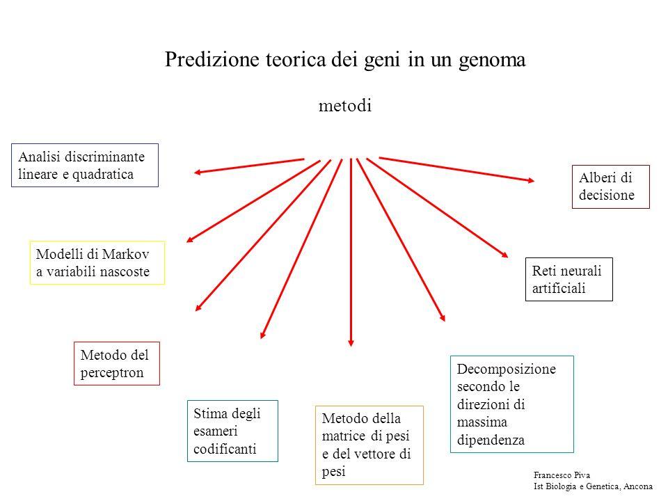 Predizione teorica dei geni in un genoma metodi Analisi discriminante lineare e quadratica Modelli di Markov a variabili nascoste Metodo del perceptro