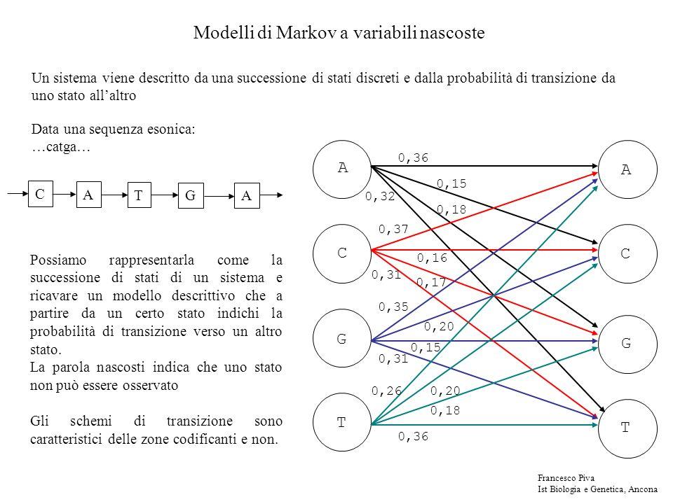 Modelli di Markov a variabili nascoste Un sistema viene descritto da una successione di stati discreti e dalla probabilità di transizione da uno stato