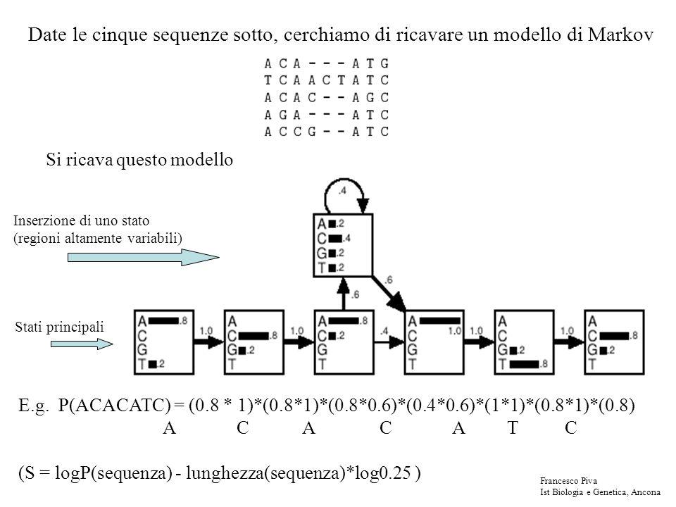 Date le cinque sequenze sotto, cerchiamo di ricavare un modello di Markov Si ricava questo modello E.g. P(ACACATC) = (0.8 * 1)*(0.8*1)*(0.8*0.6)*(0.4*