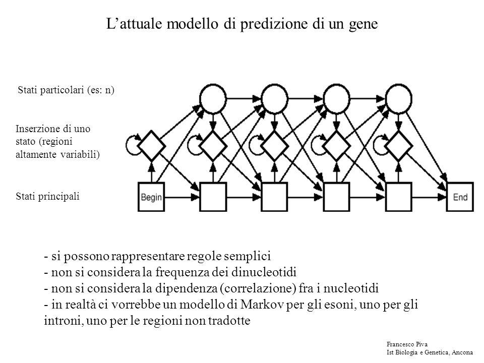 Lattuale modello di predizione di un gene Stati principali Inserzione di uno stato (regioni altamente variabili) Stati particolari (es: n) - si posson