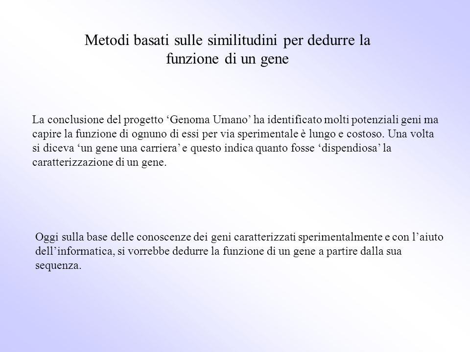 Metodi basati sulle similitudini per dedurre la funzione di un gene La conclusione del progetto Genoma Umano ha identificato molti potenziali geni ma