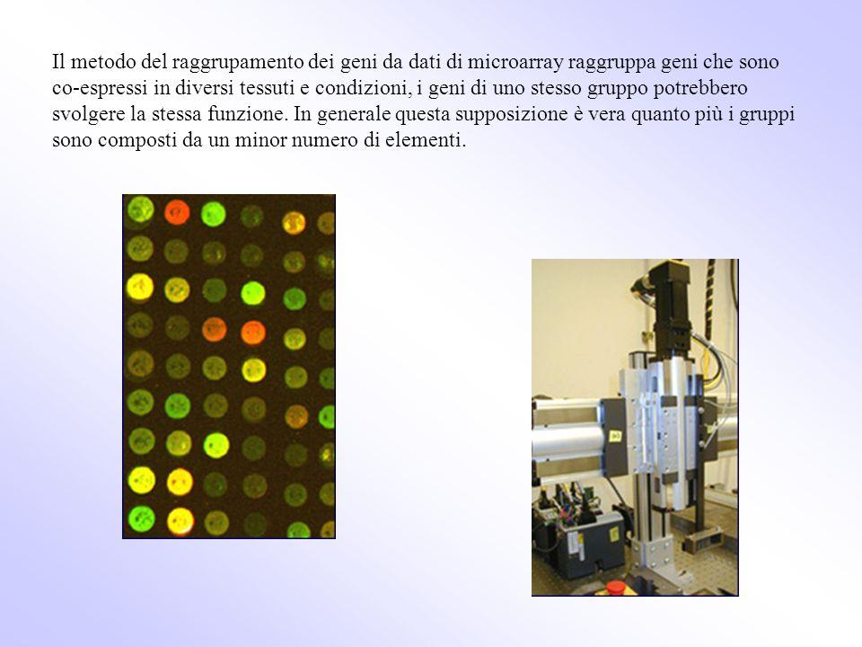 Il metodo del raggrupamento dei geni da dati di microarray raggruppa geni che sono co-espressi in diversi tessuti e condizioni, i geni di uno stesso g