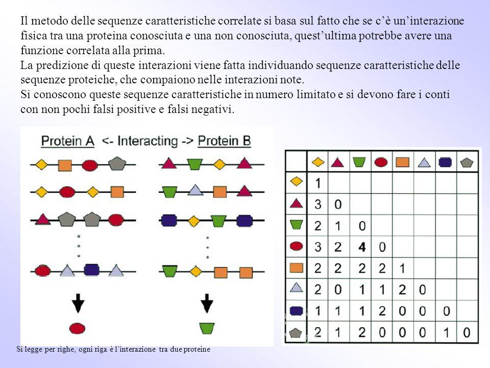 Il metodo delle sequenze caratteristiche correlate si basa sul fatto che se cè uninterazione fisica tra una proteina conosciuta e una non conosciuta,