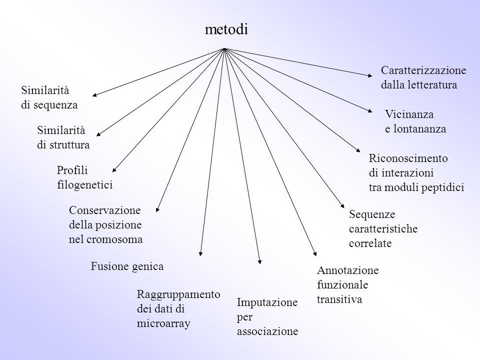 metodi Similarità di sequenza Similarità di struttura Profili filogenetici Conservazione della posizione nel cromosoma Raggruppamento dei dati di micr
