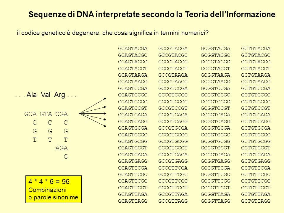 Sequenze di DNA interpretate secondo la Teoria dellInformazione il codice genetico è degenere, che cosa significa in termini numerici?... Ala Val Arg.