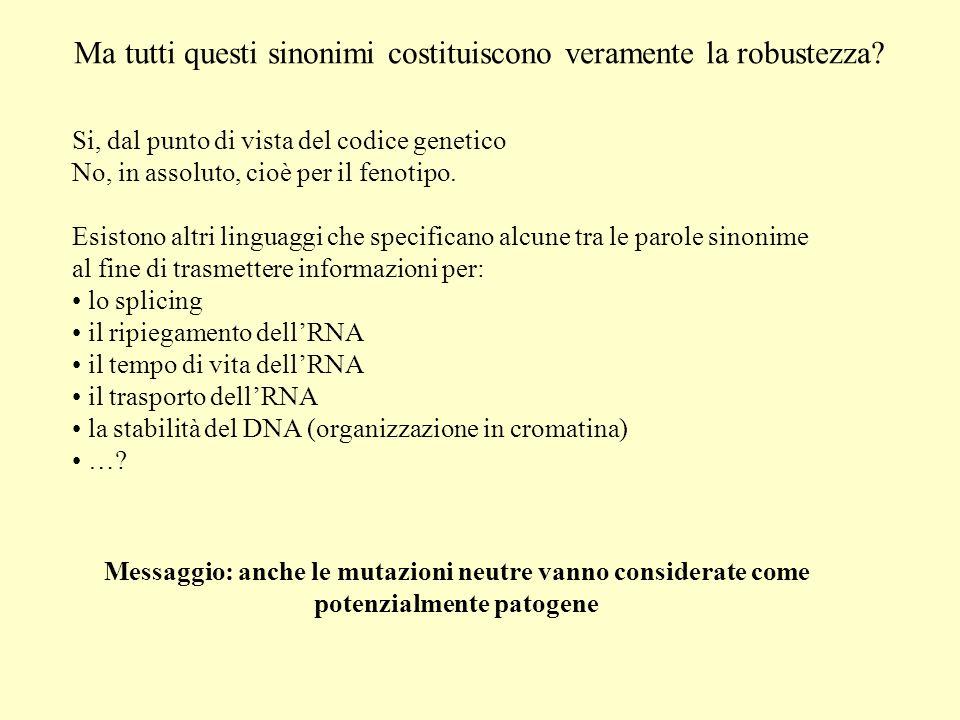 Ma tutti questi sinonimi costituiscono veramente la robustezza? Si, dal punto di vista del codice genetico No, in assoluto, cioè per il fenotipo. Esis
