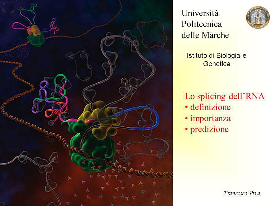 Università Politecnica delle Marche Istituto di Biologia e Genetica Lo splicing dellRNA definizione importanza predizione Francesco Piva