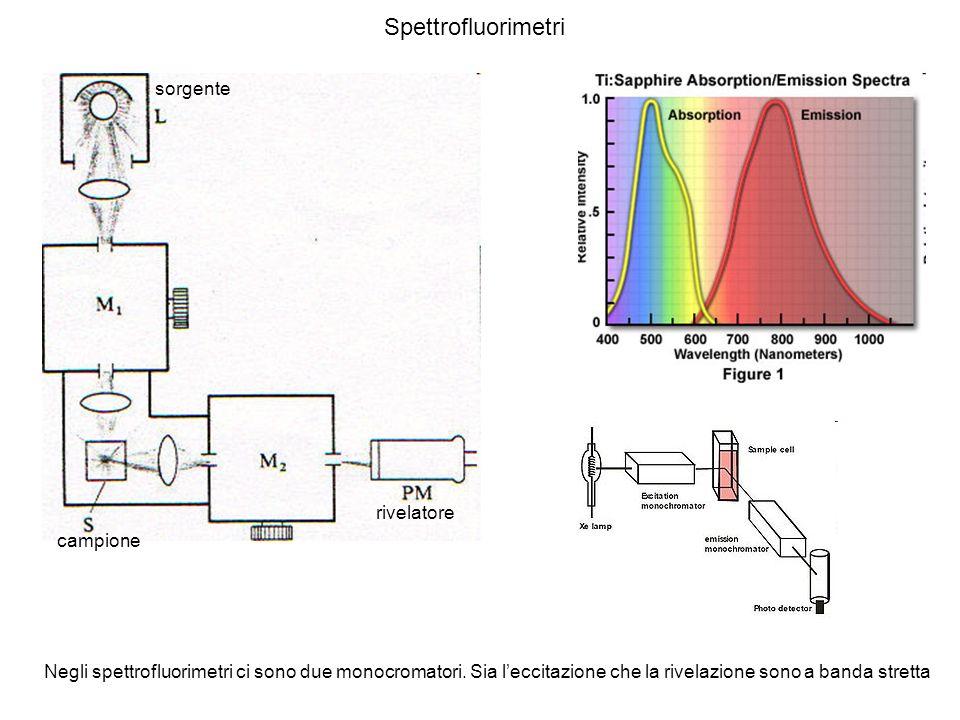Spettrofluorimetri Negli spettrofluorimetri ci sono due monocromatori. Sia leccitazione che la rivelazione sono a banda stretta rivelatore campione so