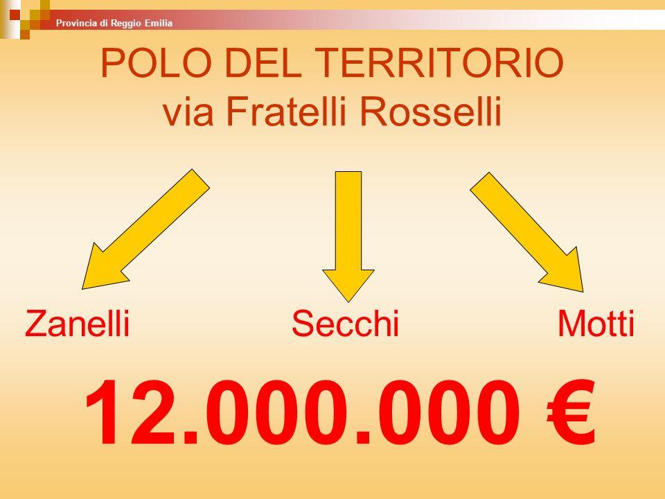 POLO DEL TERRITORIO via Fratelli Rosselli ZanelliSecchiMotti Provincia di Reggio Emilia 12.000.000
