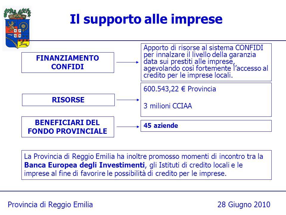 Provincia di Reggio Emilia28 Giugno 2010 Il supporto alle imprese 600.543,22 Provincia 3 milioni CCIAA RISORSE BENEFICIARI DEL FONDO PROVINCIALE 45 az