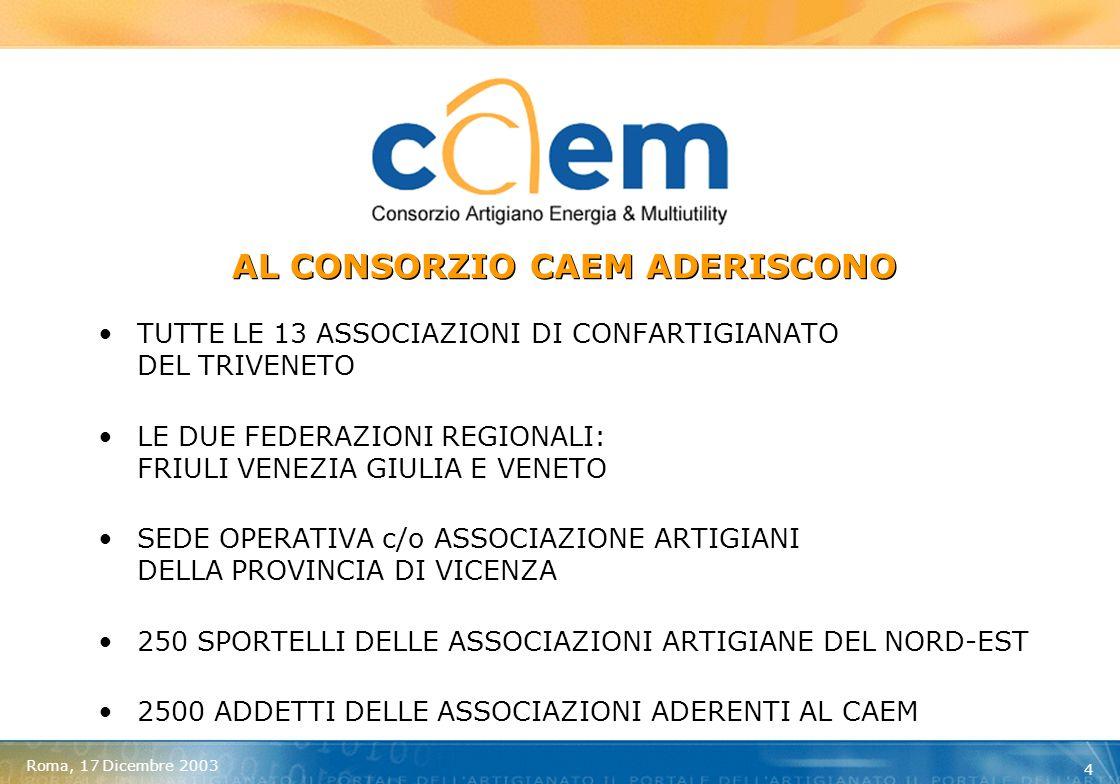Roma, 17 Dicembre 2003 15 ENEL ENERGIA – FORNITURE 2004 OFFERTA GARANTITA NEI COSTI PER LINTERO ANNO (TRIMESTRALI) COSTI PERSONALIZZATI SULLA BASE DEI CONSUMI AZIENDALI AGEVOLAZIONI SULLE FIDEIUSSIONI (CAUZIONI) ACCOUNT BEN INDIVIDUATO
