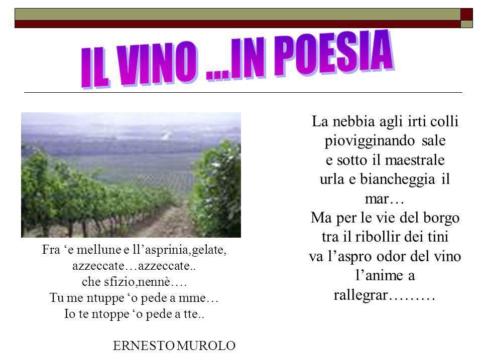 VINI FAMOSI DELLA NOSTRA TERRA Asprinio (Aversa) Deve essere ottenuto dalle uve provenienti dagli omonimi vitigni (possono concorrere altre uve a bacca bianca purchè autorizzati per la provincia di Caserta).