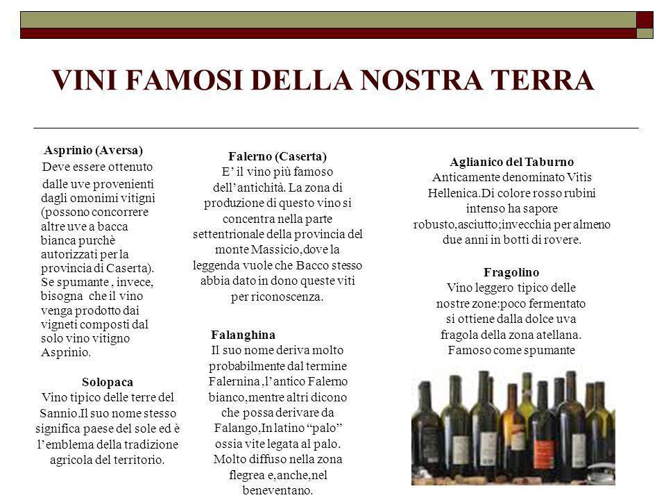 VINI FAMOSI DELLA NOSTRA TERRA Asprinio (Aversa) Deve essere ottenuto dalle uve provenienti dagli omonimi vitigni (possono concorrere altre uve a bacc