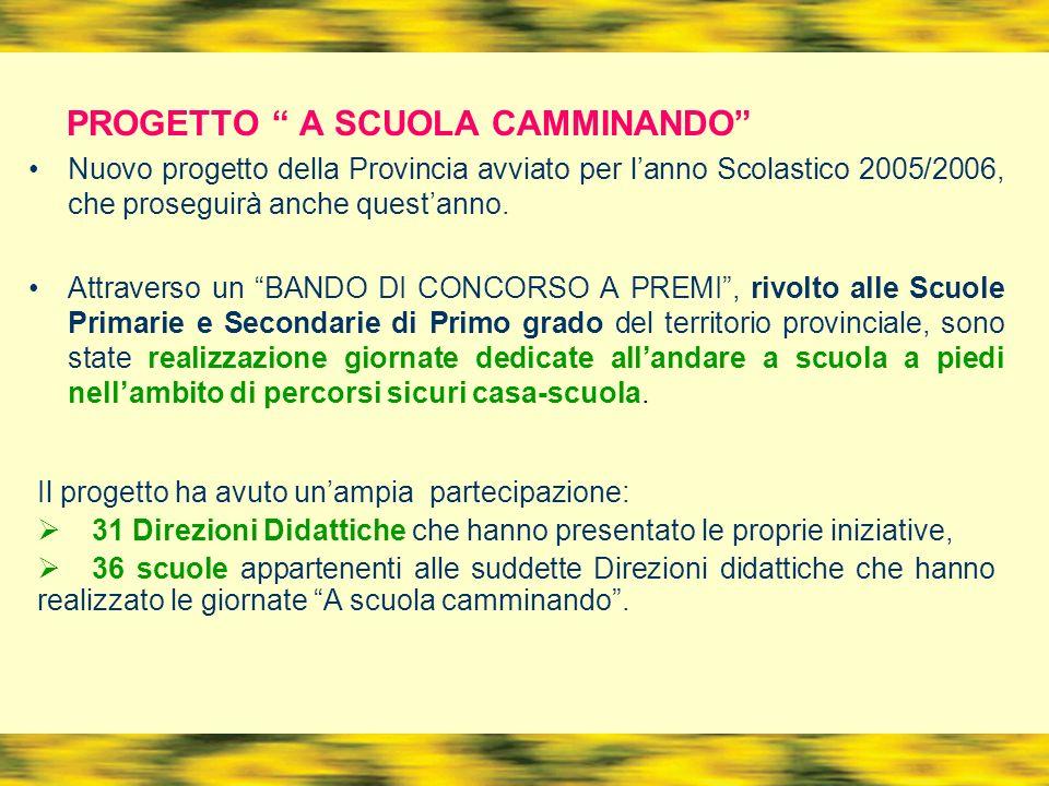PROGETTO A SCUOLA CAMMINANDO Nuovo progetto della Provincia avviato per lanno Scolastico 2005/2006, che proseguirà anche questanno.