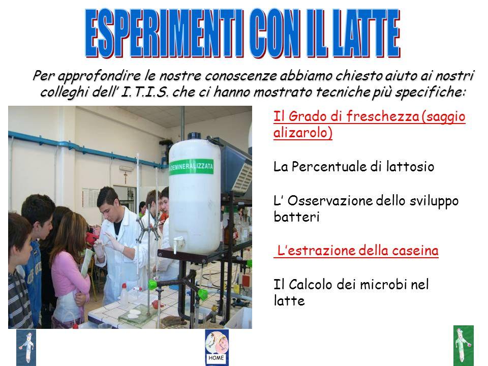 Il Grado di freschezza (saggio alizarolo) La Percentuale di lattosio L Osservazione dello sviluppo batteri Lestrazione della caseina Il Calcolo dei mi