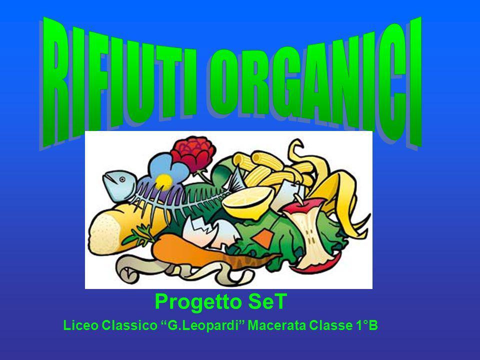 Progetto SeT Liceo Classico G.Leopardi Macerata Classe 1°B