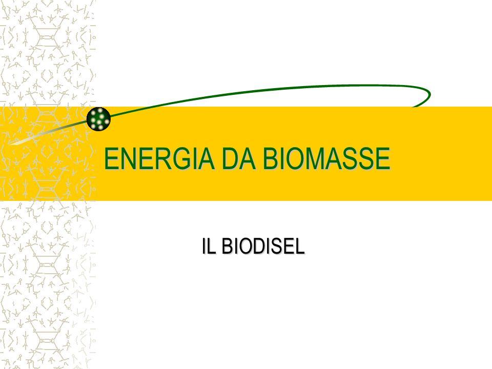 ENERGIA DA BIOMASSE IL BIODISEL
