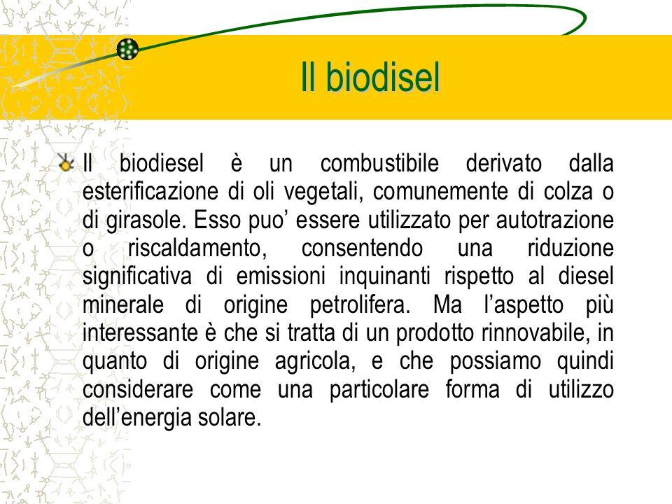 Il biodiesel è un combustibile derivato dalla esterificazione di oli vegetali, comunemente di colza o di girasole.
