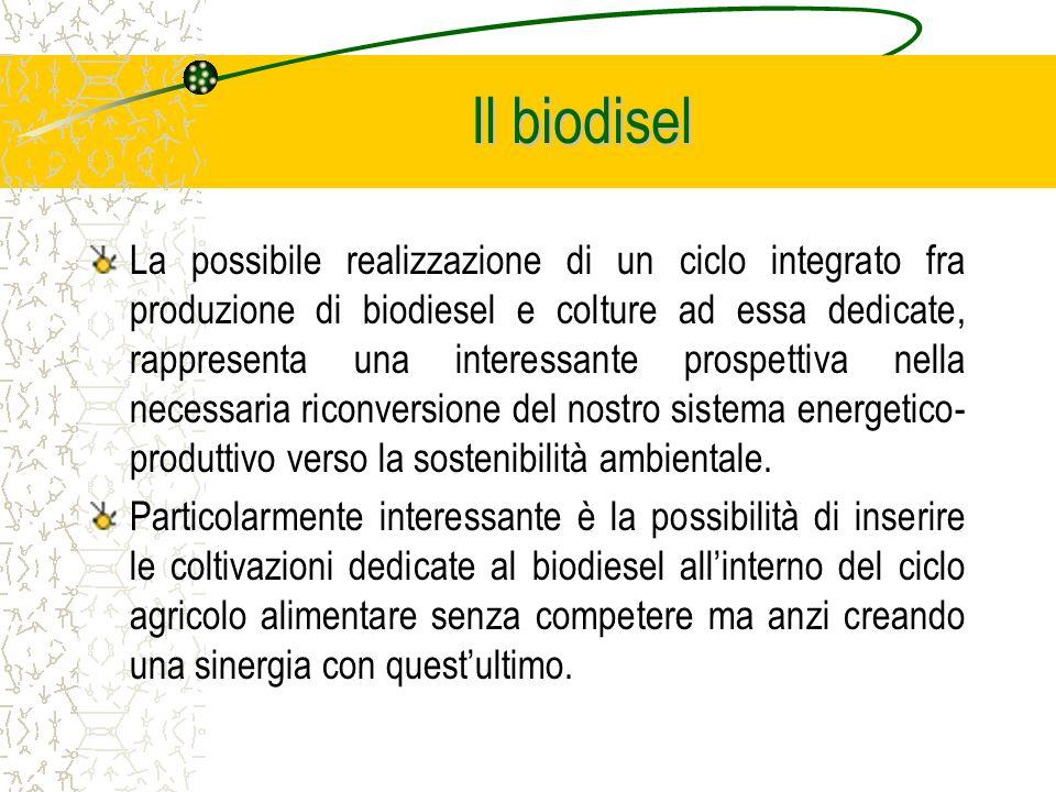 La possibile realizzazione di un ciclo integrato fra produzione di biodiesel e colture ad essa dedicate, rappresenta una interessante prospettiva nella necessaria riconversione del nostro sistema energetico- produttivo verso la sostenibilità ambientale.