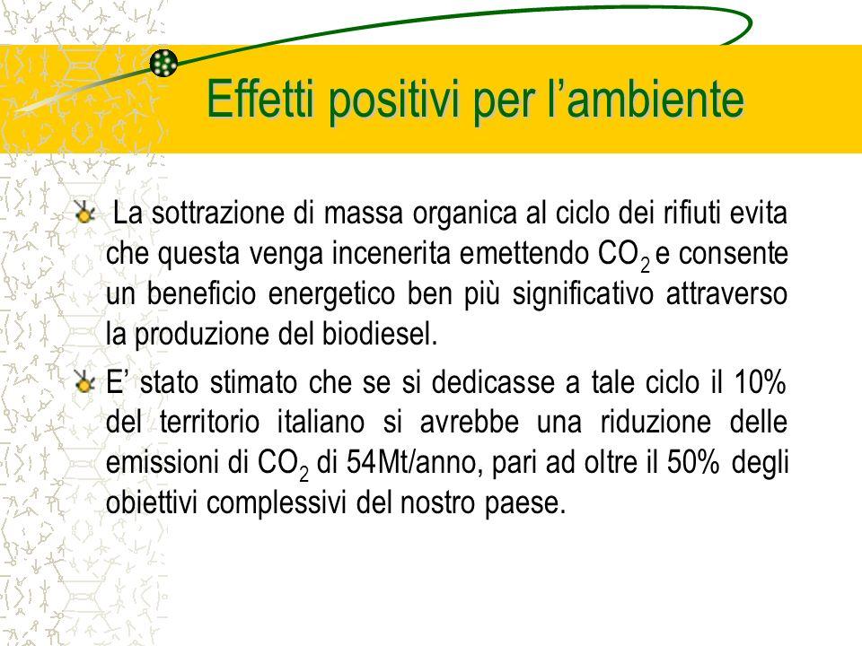 Effetti positivi per lambiente La sottrazione di massa organica al ciclo dei rifiuti evita che questa venga incenerita emettendo CO 2 e consente un beneficio energetico ben più significativo attraverso la produzione del biodiesel.