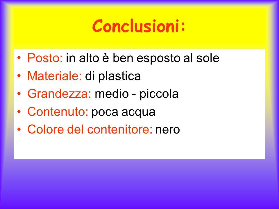 Conclusioni: Posto: in alto è ben esposto al sole Materiale: di plastica Grandezza: medio - piccola Contenuto: poca acqua Colore del contenitore: nero