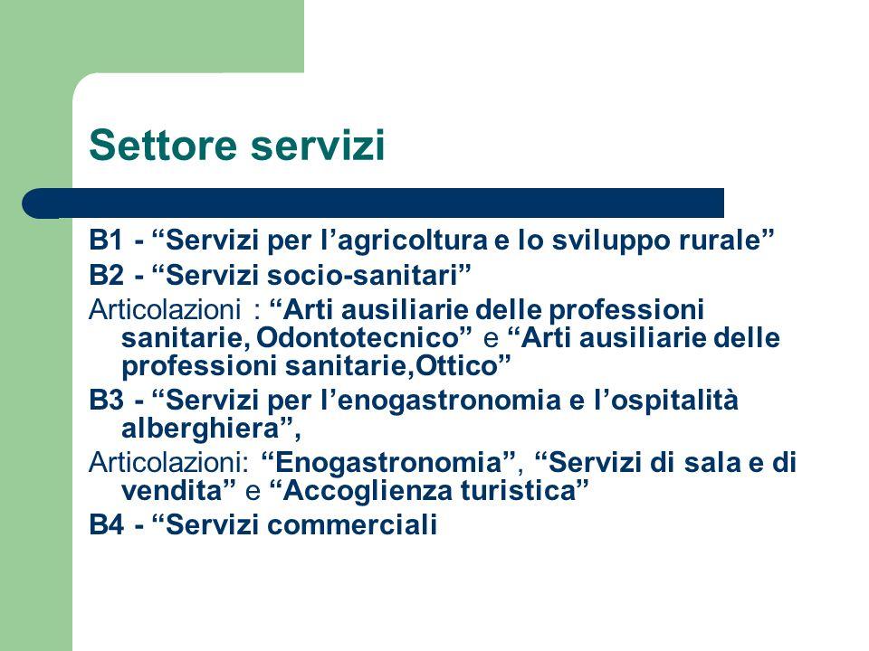 Settore servizi B1 - Servizi per lagricoltura e lo sviluppo rurale B2 - Servizi socio-sanitari Articolazioni : Arti ausiliarie delle professioni sanit