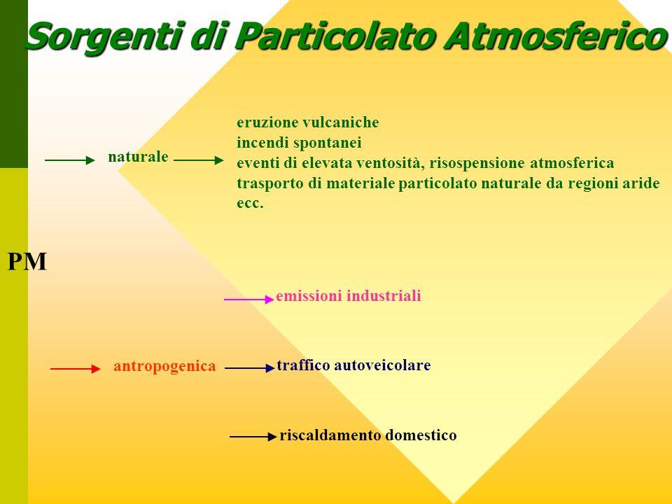 Sorgenti di Particolato Atmosferico PM naturale eruzione vulcaniche incendi spontanei eventi di elevata ventosità, risospensione atmosferica trasporto