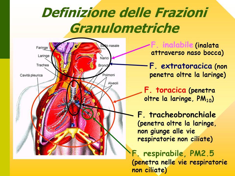 Definizione delle Frazioni Granulometriche F. inalabile (inalata attraverso naso bocca) F. extratoracica (non penetra oltre la laringe) F. toracica (p