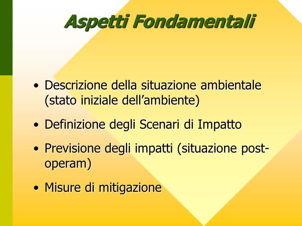 Descrizione della situazione ambientale (stato iniziale dellambiente)Descrizione della situazione ambientale (stato iniziale dellambiente) Definizione