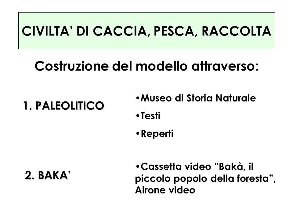 CIVILTA DI CACCIA, PESCA, RACCOLTA Costruzione del modello attraverso: 1. PALEOLITICO 2. BAKA Museo di Storia Naturale Testi Reperti Cassetta video Ba