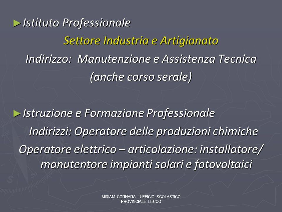 Istituto Professionale Istituto Professionale Settore Industria e Artigianato Indirizzo: Manutenzione e Assistenza Tecnica (anche corso serale) Istruz