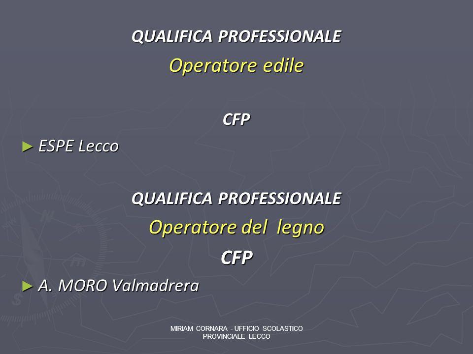 QUALIFICA PROFESSIONALE Operatore edile CFP ESPE Lecco ESPE Lecco QUALIFICA PROFESSIONALE Operatore del legno CFP A. MORO Valmadrera A. MORO Valmadrer